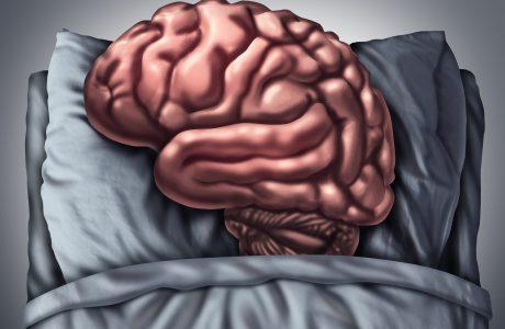 מה קורה לנו כשאנחנו לא ישנים מספיק?