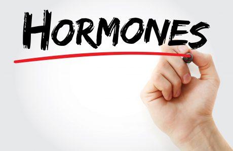 רוצים להשפיע על האיזון ההורמונלי שלכם? בחרו נכון את המזונות שאתם אוכלים!